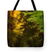 Summer And Fall Collide Tote Bag