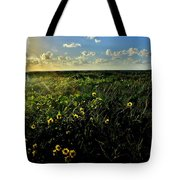 Summer Beach Daisy 2 Tote Bag