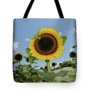 Summer Begin Tote Bag