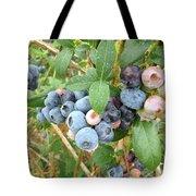 Summer Blueberries Tote Bag