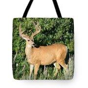 Summer Buck Tote Bag