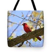 Summer Cardinal Tote Bag