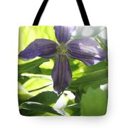 Summer Clematis In Light Shade Tote Bag