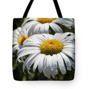 Summer Daisies  Tote Bag