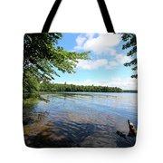 Summer Dreaming On Lake Umbagog  Tote Bag