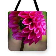 Summer Flambe Tote Bag
