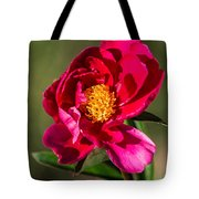 Summer Flower II Tote Bag
