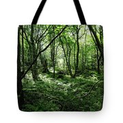 Summer Forest On A Sunny Day Tote Bag