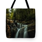 Summer Glow On The Falls Tote Bag