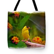 Summer Goldfinch Tote Bag