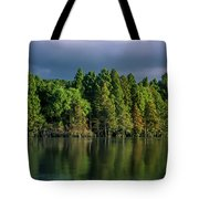 Summer Highlights Tote Bag