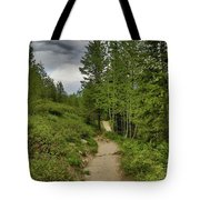 Summer Hike And Storm Clouds Tote Bag