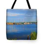 Summer In Holland-3 Tote Bag