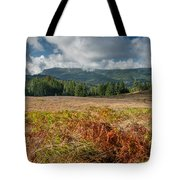 Summer In The Bald Hills 1 Tote Bag