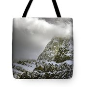 Summer In The Rockies Tote Bag