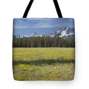 Summer In The Sawtooths Tote Bag