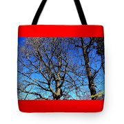 Summer In United States Tote Bag