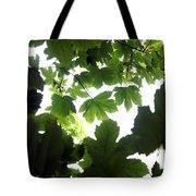 Summer Xxii Tote Bag
