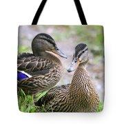 Summer Mallard Couple Tote Bag