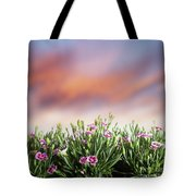 Summer Meadow Flowers In Grass At Sunset. Tote Bag