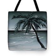 Summer Night In Florida Tote Bag
