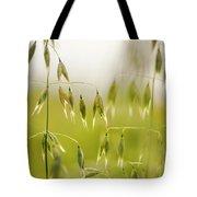 Summer Oat Tote Bag