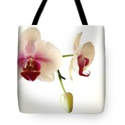 Summer Orchids Tote Bag