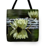 Summer Peace In The Rock Gardens Tote Bag