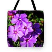 Summer Purple Phlox Tote Bag