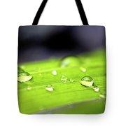 Summer Rain 2 Tote Bag