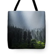 Summer Rain In The Indian Himalayas Of Kashmir Tote Bag