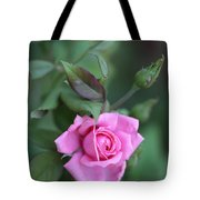 Summer Sweet Rose Tote Bag