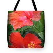 Summer Time Beauties - Hibiscus - Dora Sofia Caputo Tote Bag