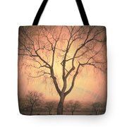 Summerland Light In Winter Tote Bag