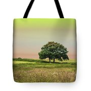 Summer's Evening Tote Bag