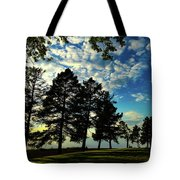 Sun And Shadow By Earl's Photography Tote Bag