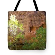 Sun Bathing In The Canyon Tote Bag