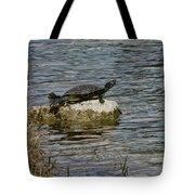 Sun Bathing Stone Tote Bag