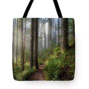 Sun Beams Along Hiking Trail In Washington State Park Tote Bag