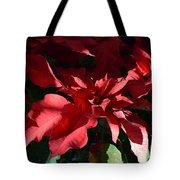 Sun Blushed Poinsettia  Tote Bag