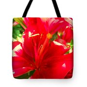 Sun Dappled Lily Tote Bag