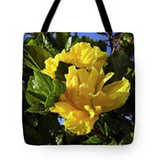 Sun-drenched Yellow Hibiscus Tote Bag