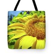 Sun Flower Art Sunlit Sunflower Giclee Prints Baslee Troutman Tote Bag