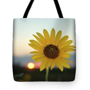 Sun Flower At Sunset Tote Bag