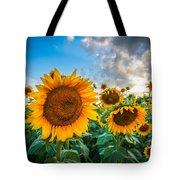 Sun Flower Glow Tote Bag