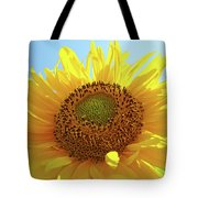 Sun Flowers Art Sunflower Giclee Prints Baslee Troutman  Tote Bag