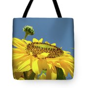 Sun Flowers Summer Sunny Day 8 Blue Skies Giclee Art Prints Baslee Troutman Tote Bag
