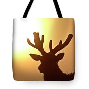 Sun Glaring Over A Bull Elk Tote Bag