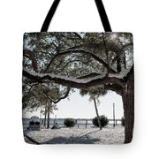 Sun Gleaming Through The Snow Tote Bag