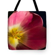 Sun Greeting Tote Bag